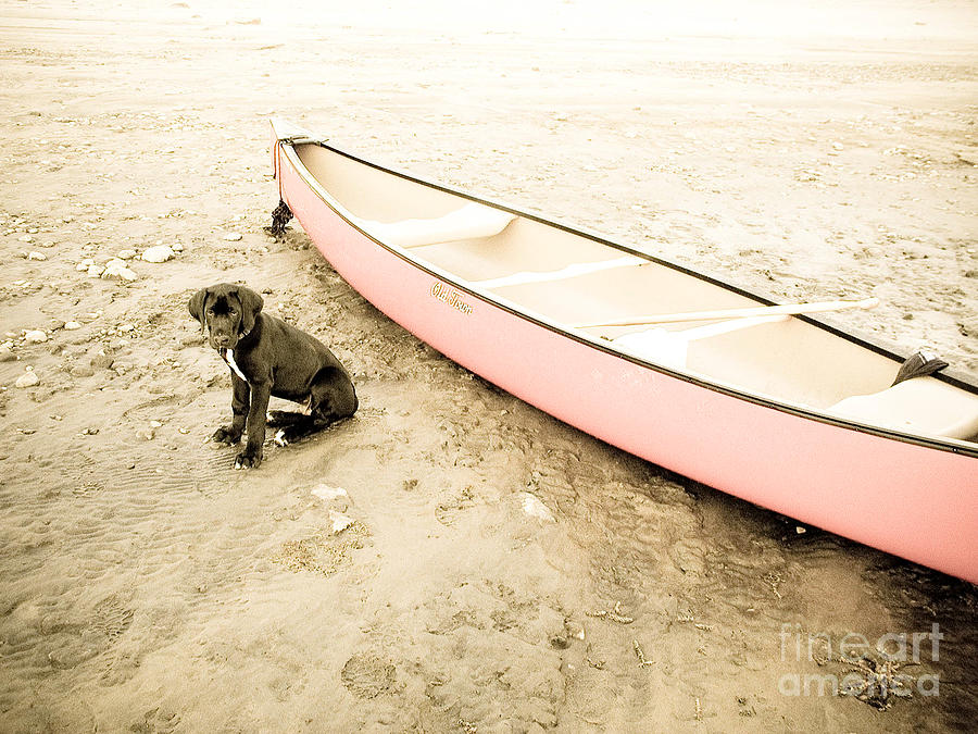 Canoe Photograph - Memories  by Sarah Goodbread