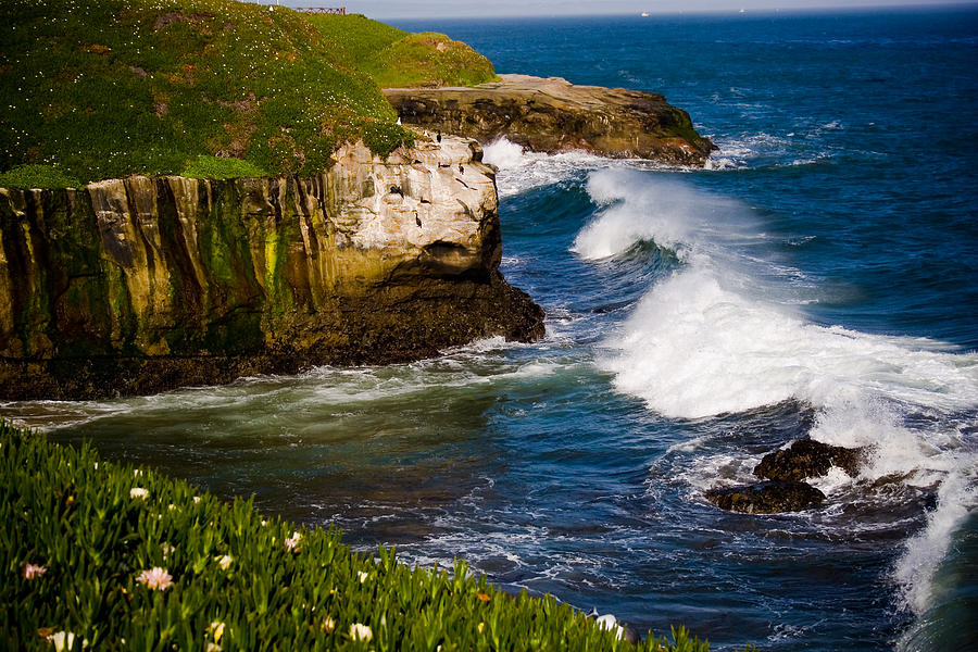 Mendocino Photograph by Roy Hale