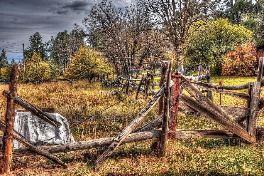 Mending Fences Photograph by Thomas Todd