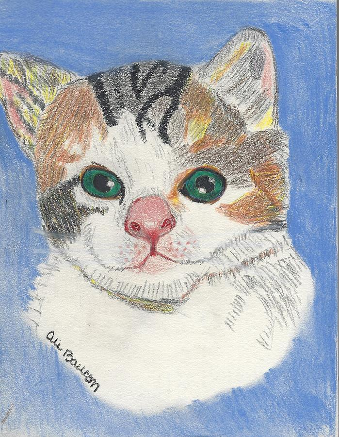 Meow Meow Drawing By Ali Baucom,Patty Pan Squash