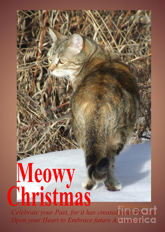 Meowy Christmas by Marianne NANA Betts
