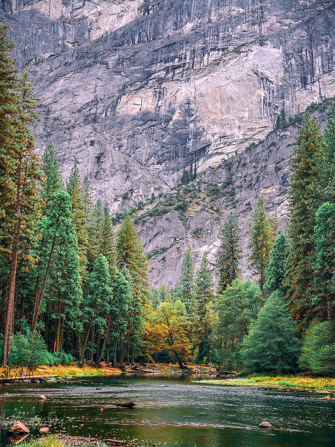 Merced @ Yosemite Tall by Steven Maxx