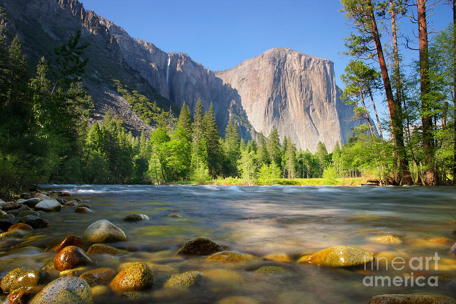 Yosemite Photograph - Merced River In Yosemite Valley by Buck Forester