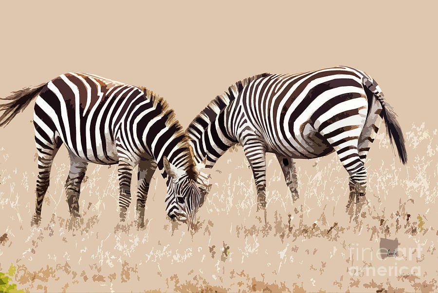 Zebra Digital Art - Merging Zebra Stripes by Sharon Foelz