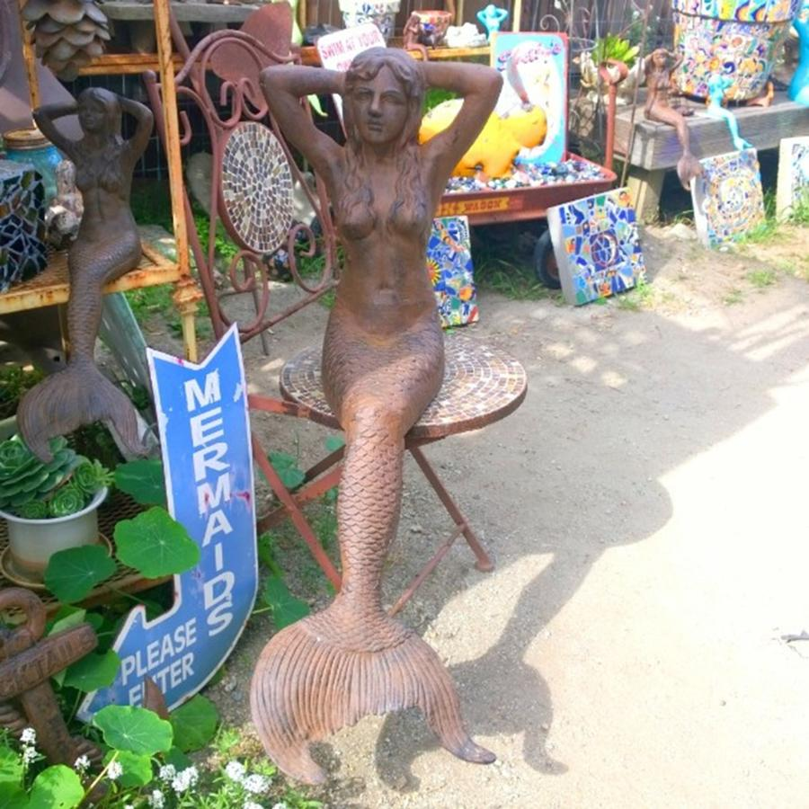Decor Photograph - #mermaids. Need I Say More? #garden by Shari Warren