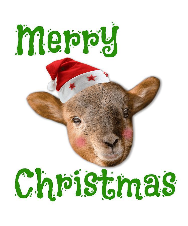 Merry Christmas Cute Reindeer With Santa Hat Drawing by Kanig Designs