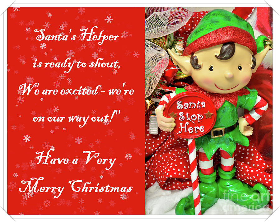 greeting card photograph merry christmas elf by debby pueschel - Merry Christmas Elf