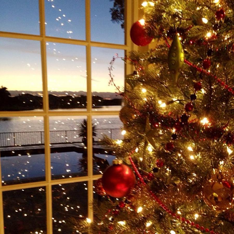 Merry Christmas Everyone!!! Photograph by Juan Silva