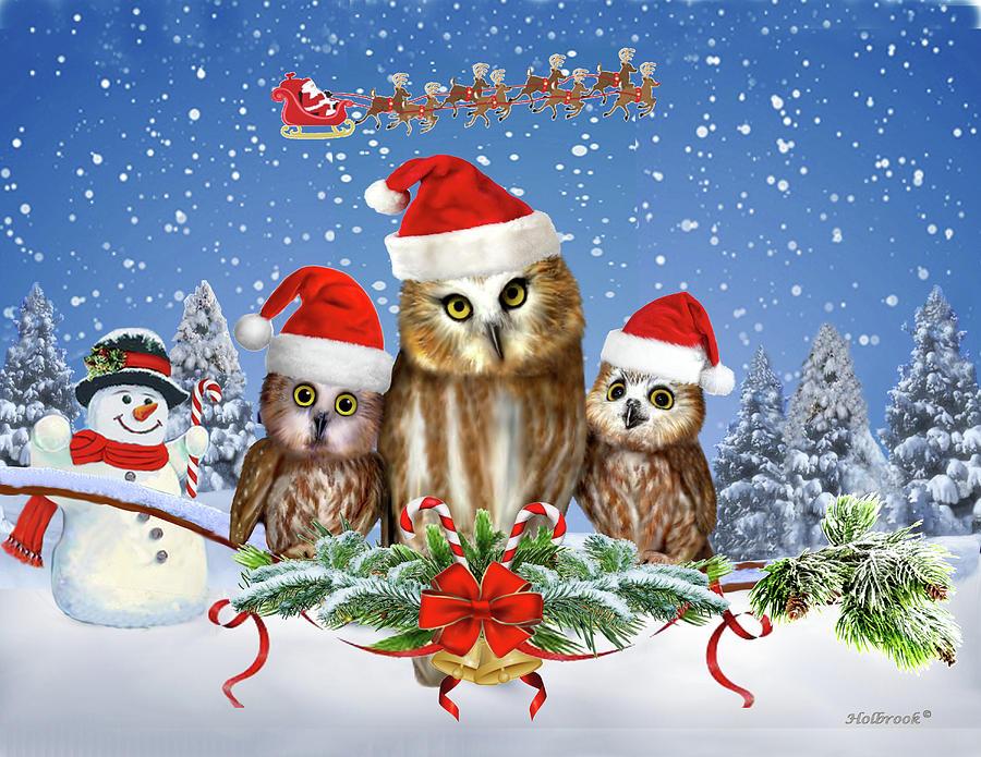 Christmas Owl.Merry Christmas From Owl Of Us
