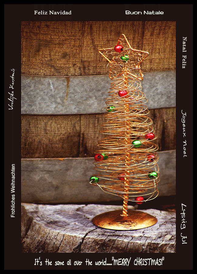 Still Life Photograph - Merry Christmas by Holly Kempe