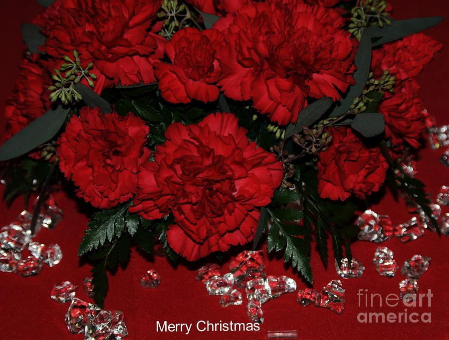 Red Photograph - Merry Christmas by Kathleen Struckle