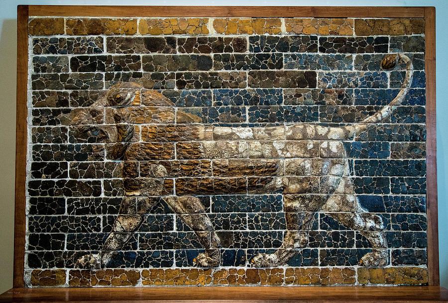 Mesopotamia Photograph - Mesopotamian Lion by Ross Henton
