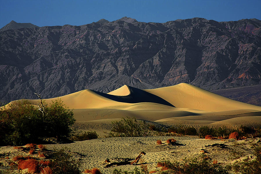 Death Valley National Park Photograph - Mesquite Flat Dunes - Death Valley California by Christine Till