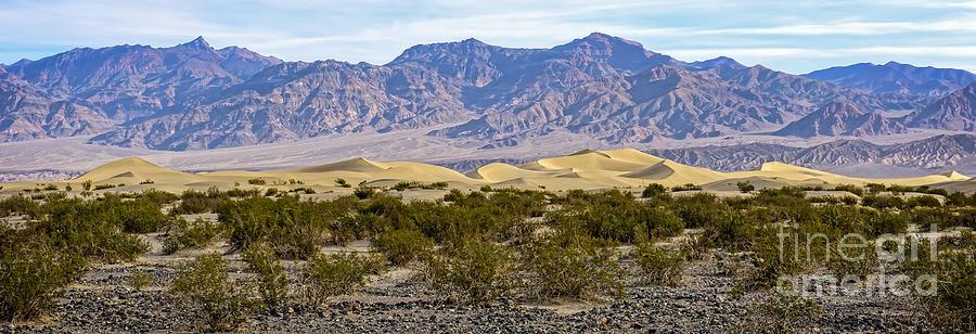 Adventure Photograph - Mesquite Flat Sand Dunes by Charles Dobbs