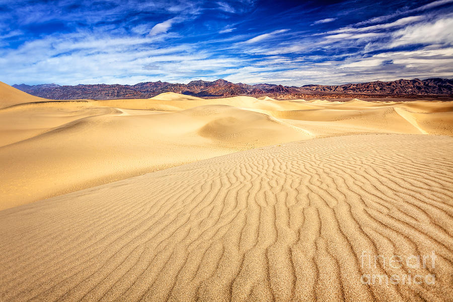 Mesquite Flat Sand Dunes in Death Valley by Bryan Mullennix