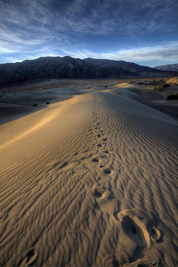 California Photograph - Mesquite Flats Footsteps by Peter Tellone