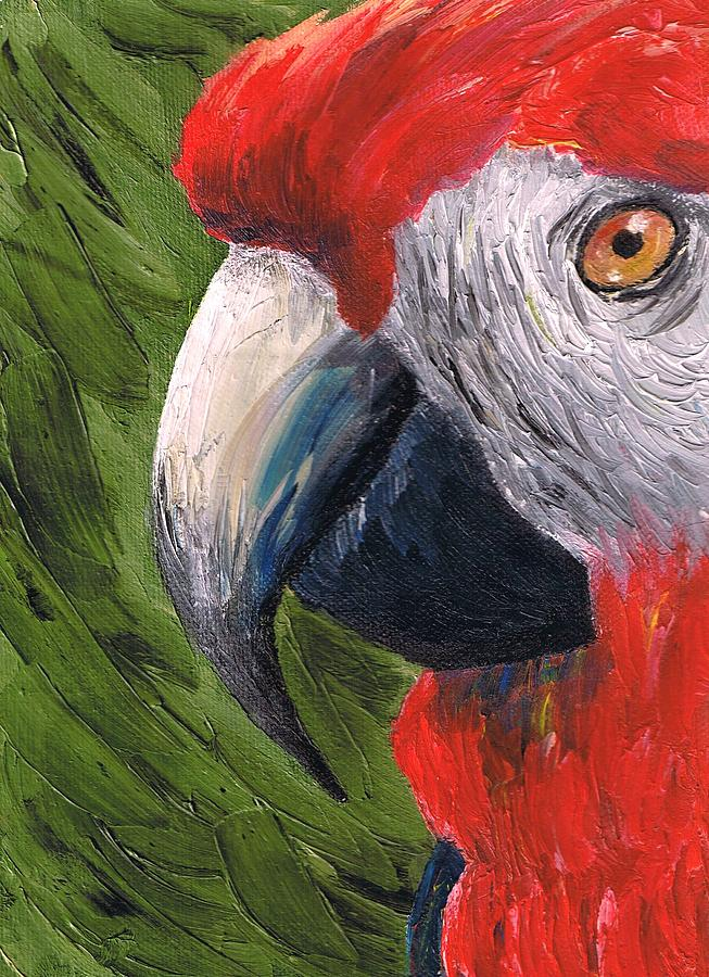 Parrot Painting - Messy Parrot by Brandon Sharp