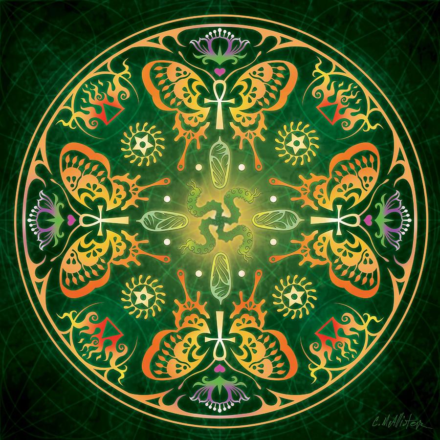 Butterfly Digital Art - Metamorphosis Mandala by Cristina McAllister
