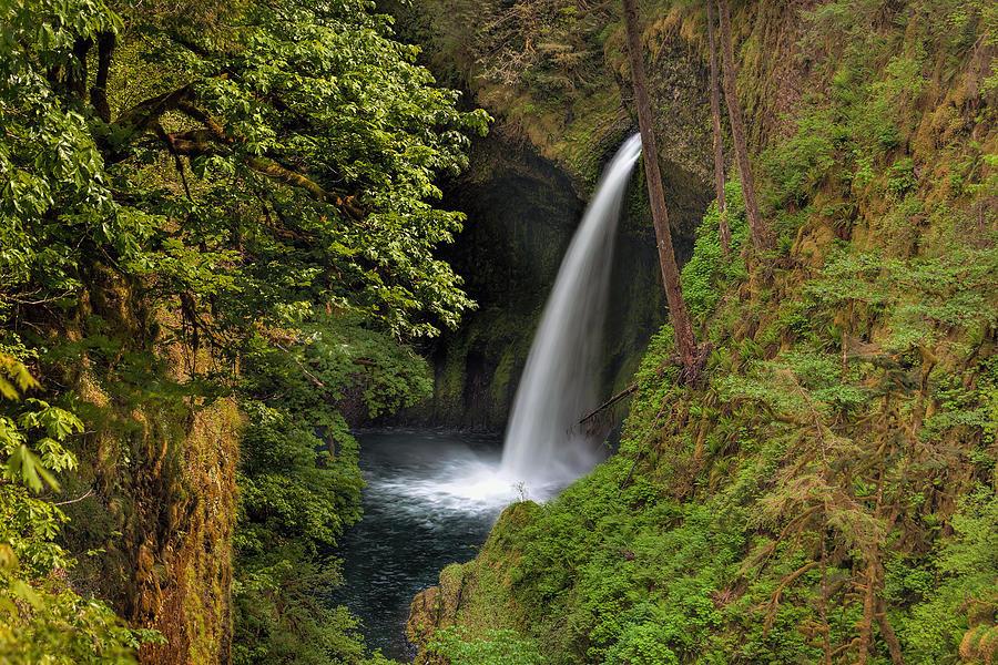 Metlako Falls Photograph - Metlako Falls In Spring by David Gn