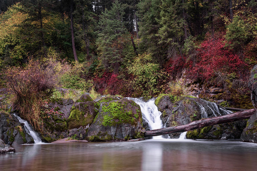 Meyers Falls by Harold Coleman