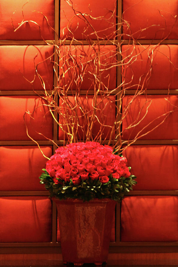 Foral Photograph - Mgm Red Rose Display by Linda Phelps