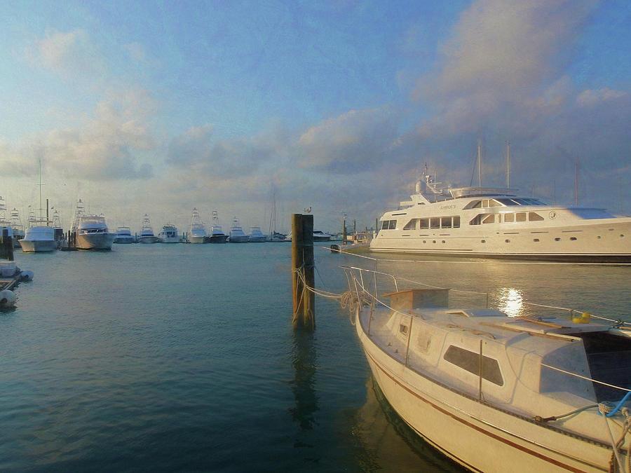 Miami Photograph - Miami Harbor by JAMART Photography