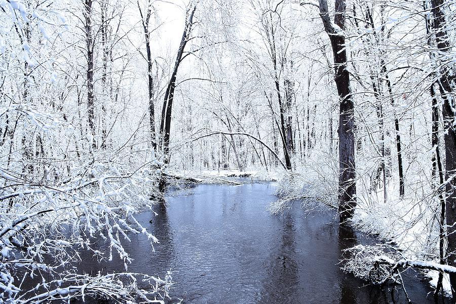Michigan Photograph - Michgan Winter 10 by Scott Hovind