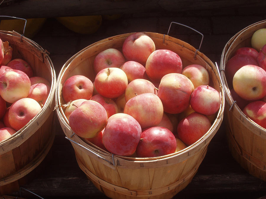 Apples Photograph - Michigan Apples by Wayne Potrafka