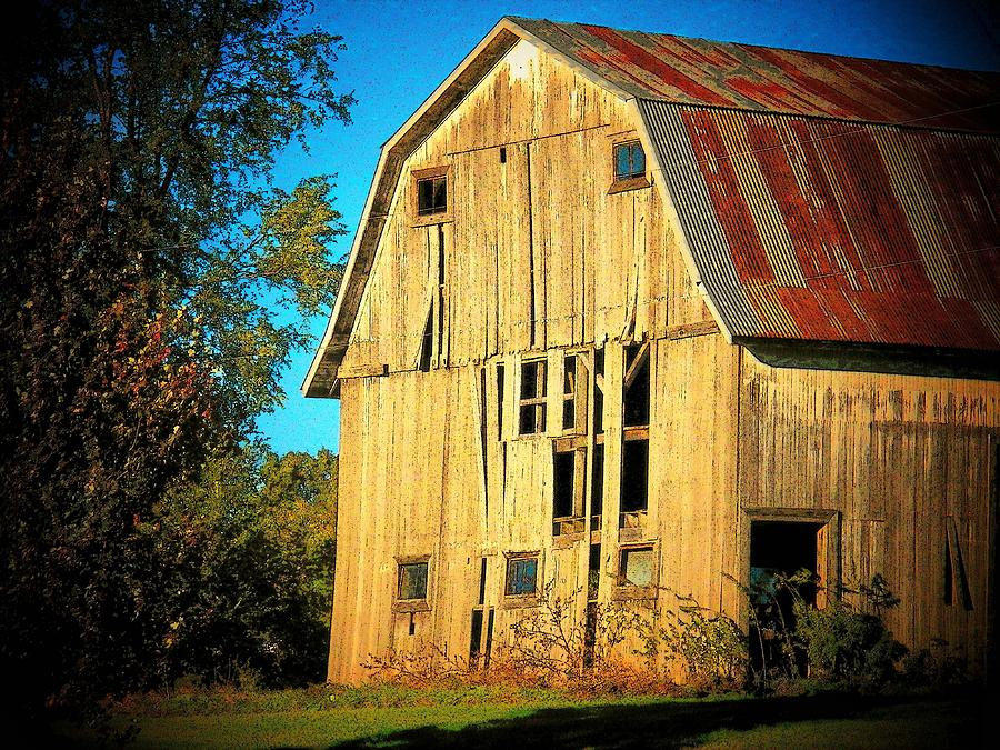 Barn Photograph - Michigan Barn by Joyce Kimble Smith