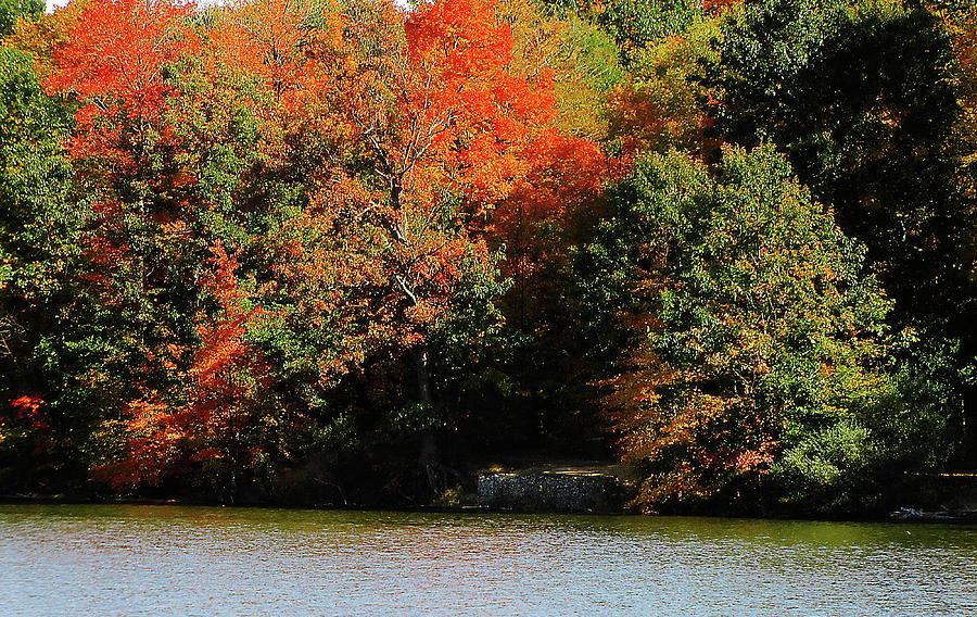 Hovind Photograph - Michigan Fall Colors 5  by Scott Hovind