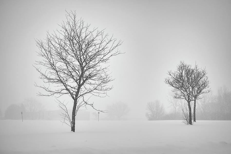 Michigan Winter Photograph