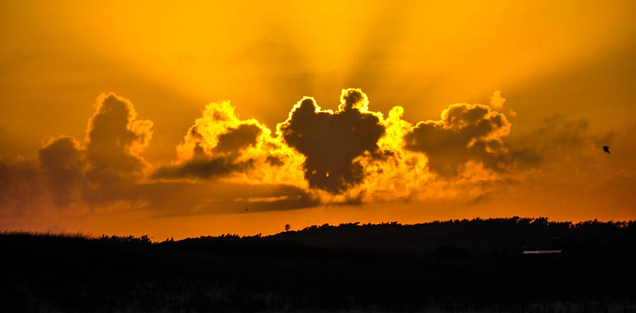 Sunset Photograph - Mickey Sunset by Terepka Dariusz