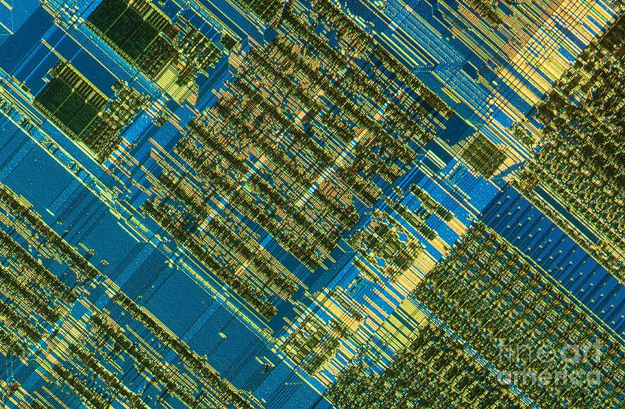 Science Photograph - Microprocessor by Michael W. Davidson