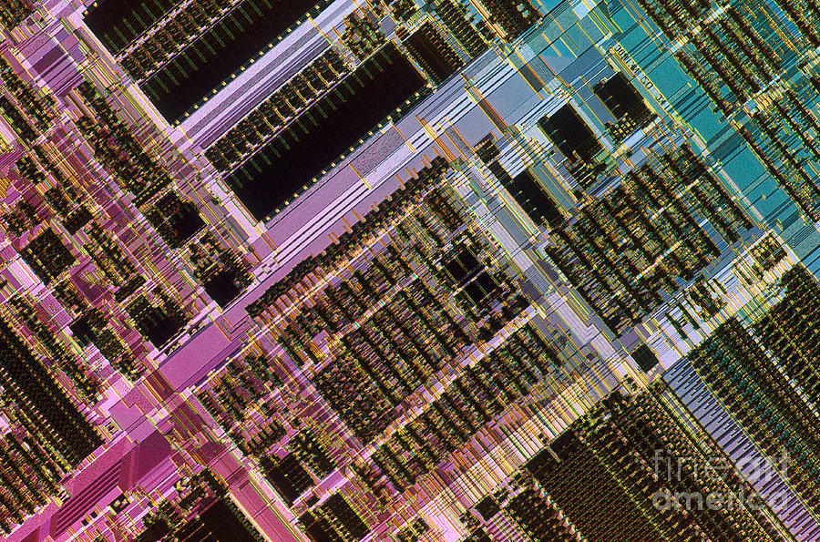 Microprocessor Photograph - Microprocessors by Michael W. Davidson