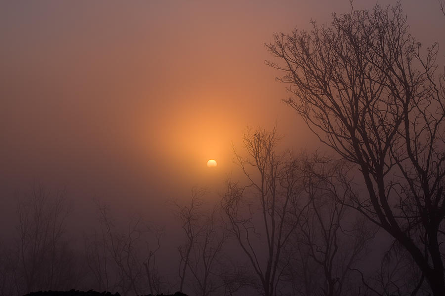 Sun Photograph - Mid Day Fog by Naman Imagery