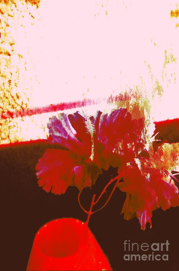Color Photograph - Mid-day Haze by Ash Soomro-Irani