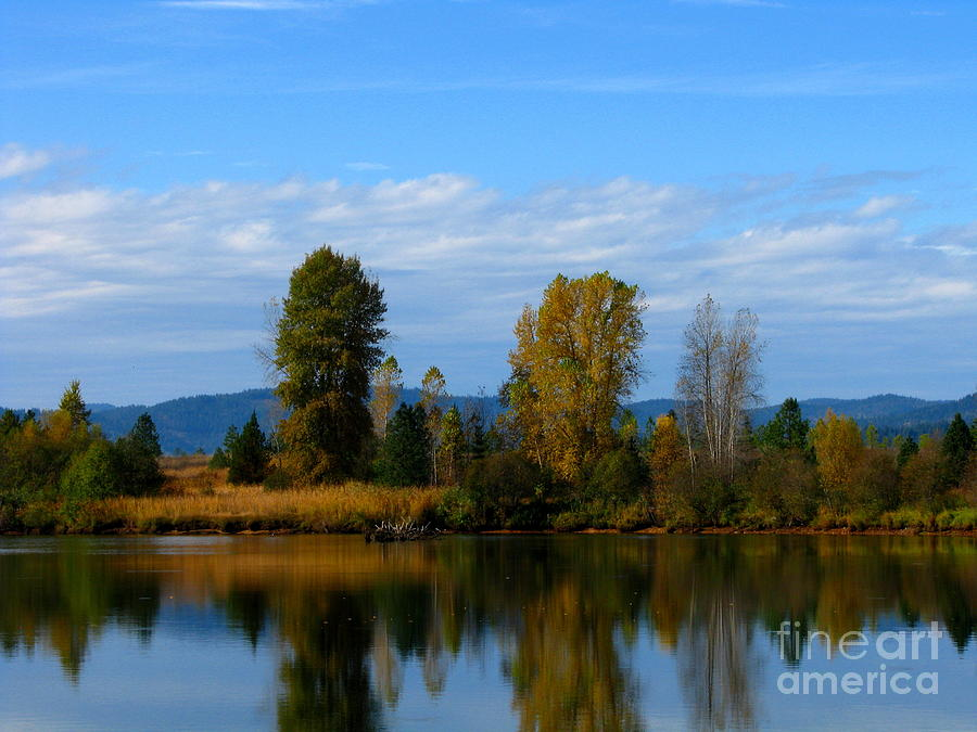 Landscape Photograph - Mid Morning Coffee by Greg Patzer