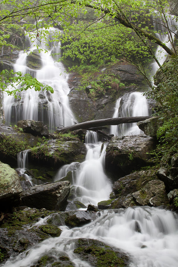 Streams Photograph - Middle Catawba Falls by Forrest N Camellia