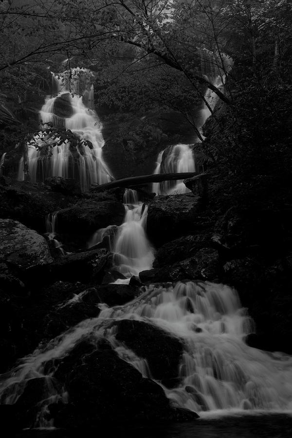 Streams Photograph - Middle Catawba Falls In B -n- W by Forrest N Camellia