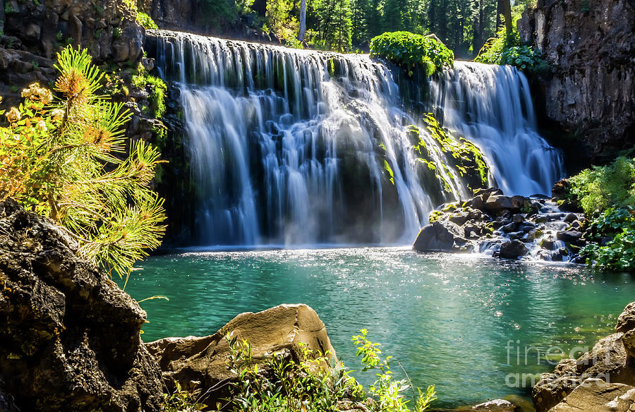 Middle Falls, McCloud by Paul Gillham