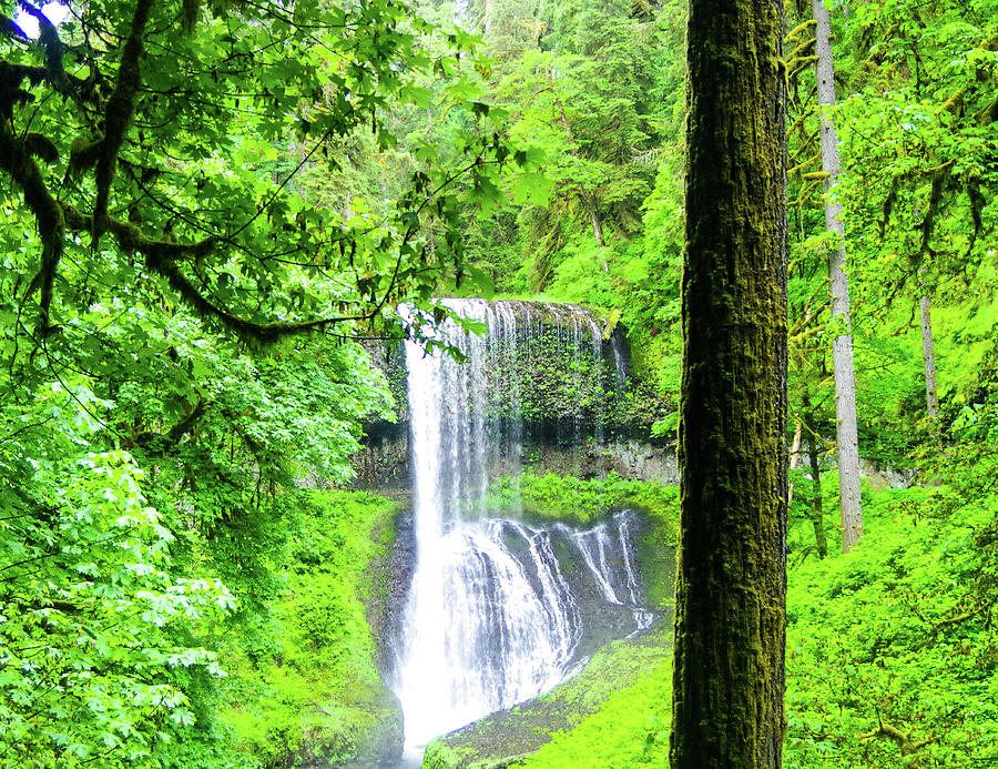 Water Falls Photograph - Middle North Falls 5 by Mike Wheeler