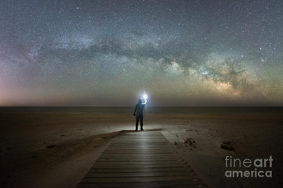Maryland Photograph - Midnight Explorer at Assateague Island by Michael Ver Sprill