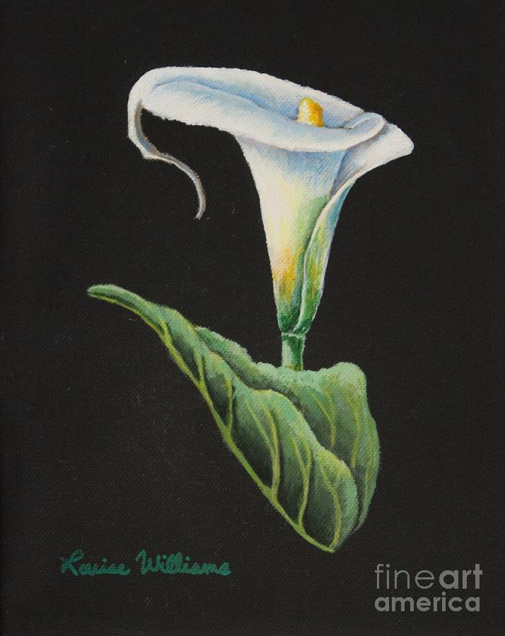 Calla Lily Painting - Midnight Lilly by Louise Williams