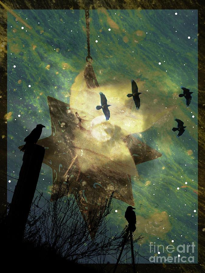 Crow Photograph - Midnight Magic by Robert Ball