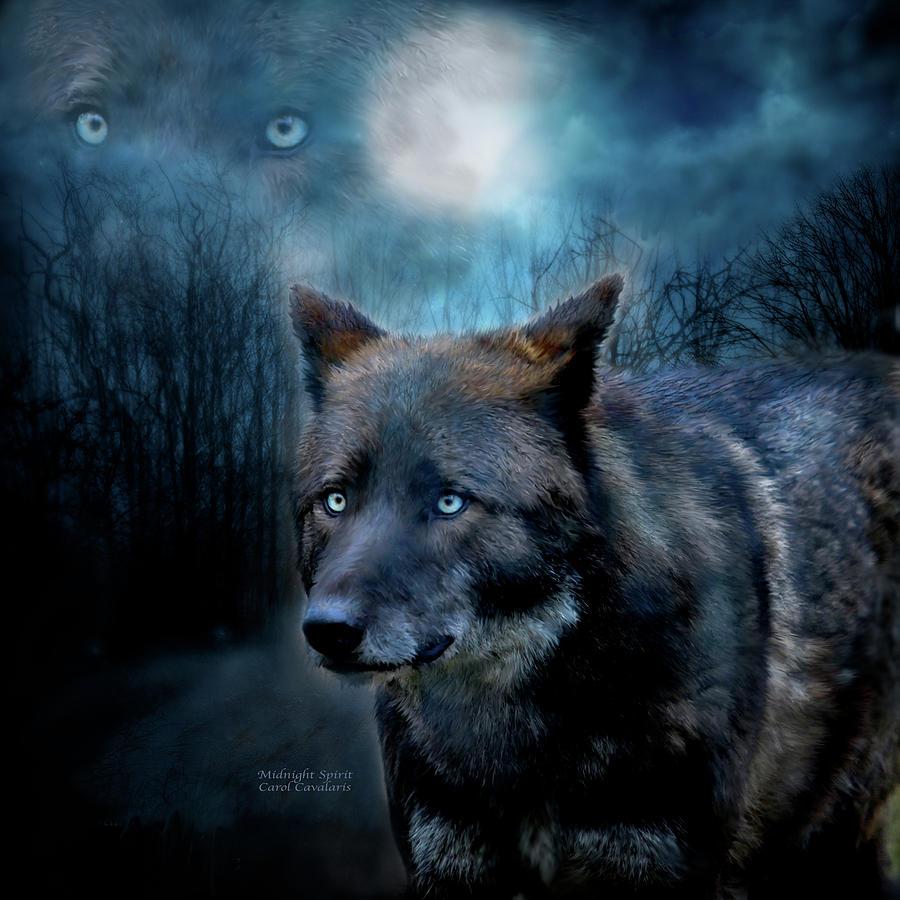 Wolf Mixed Media - Midnight Spirit by Carol Cavalaris
