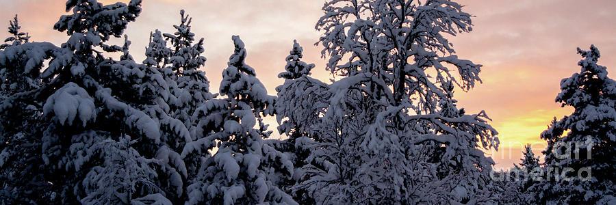 Polar Night In Ivalo Photograph