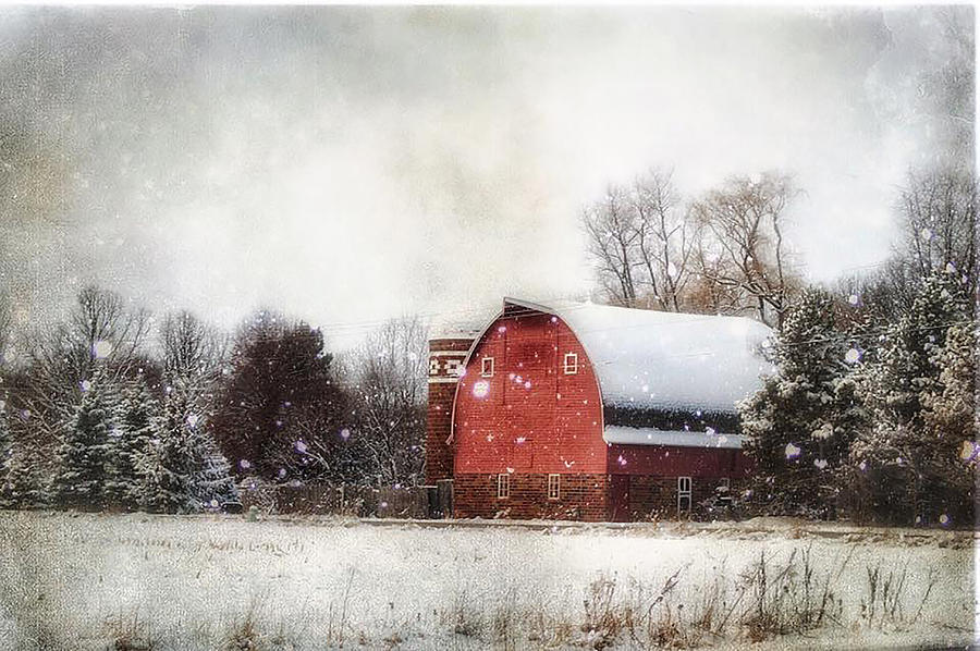 Winter Photograph - Midwest Winter by Angela King-Jones