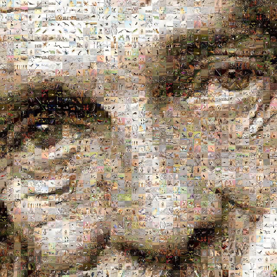 Mosaic Digital Art - Mike by Gilberto Viciedo
