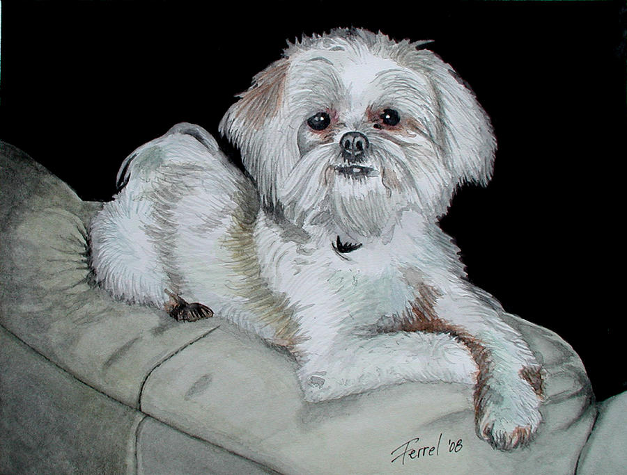 Dog Painting - Miki Dog by Ferrel Cordle
