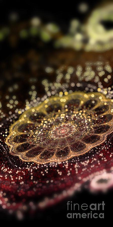 Fraktal Digital Art - Microskopic II by Sandra Hoefer